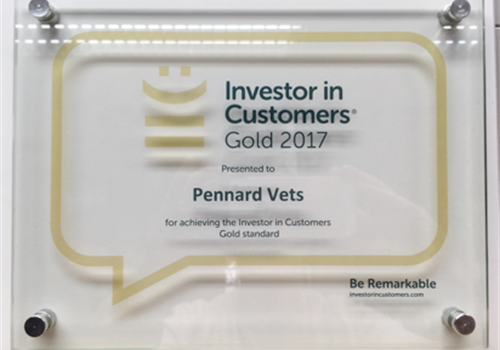 Gold award achieved from the independent investor in customer service